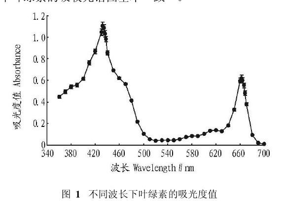 利用叶绿素测量仪研究桑叶的叶绿素含量图片